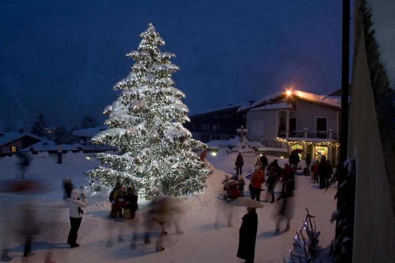 Courmayeur magic cristmast trees freeride heliski